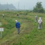 堤防除草作業状況